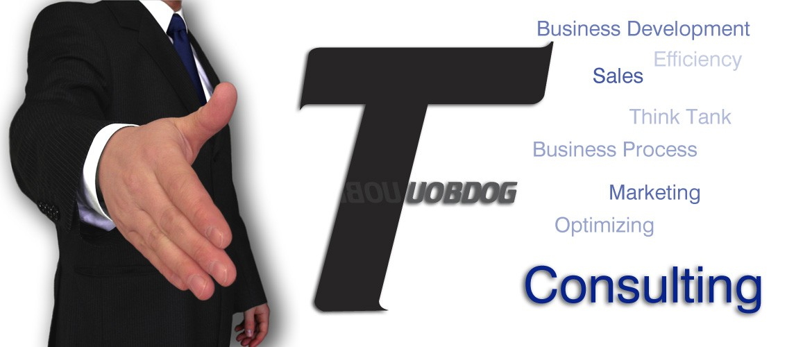Sales, Marketing and Strategy Consulting Services by Tuobdog